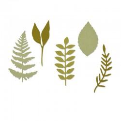 Fustella Sizzix Thinlits -Meadow Leaves