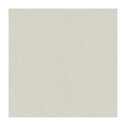 Cartoncino bazzill liscio-  Taffy