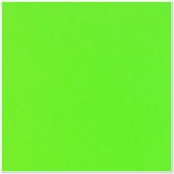 Gomma crepla adesiva - Verde brillante - 20x30 cm