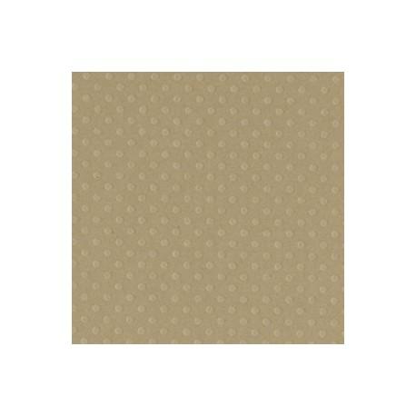 Cartoncino bazzill dots - Rope swing