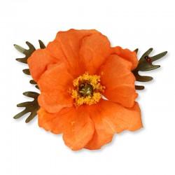 Flower, Poppy