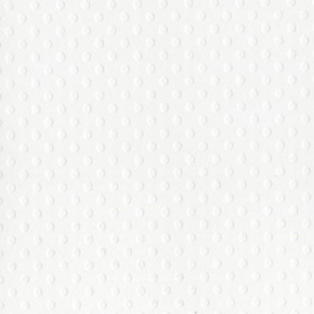 Cartoncino bazzill dots - Salt