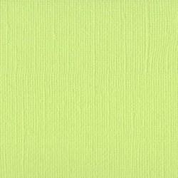 Cartoncino bazzill mono - Limeade