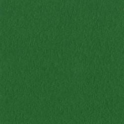 Cartoncino bazzill mono - Bazzil green