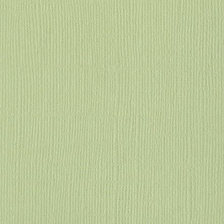 Cartoncino bazzill mono - Aloe vera