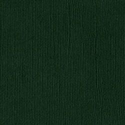 Cartoncino bazzill mono - Aspen