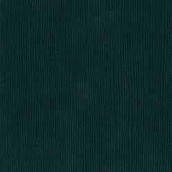 Cartoncino bazzill mono - Jade