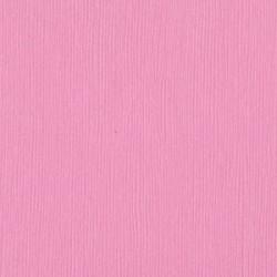 Cartoncino Bazzill Fourz - Fussy