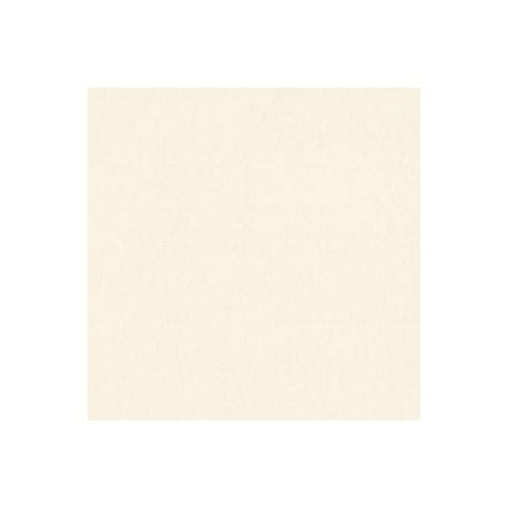 Cartoncino Bazzill Classics - Natural