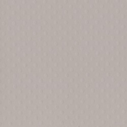 Cartoncino bazzill dots - Front Porch