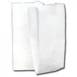 Sacchetto carta bianco - 10x20 cm