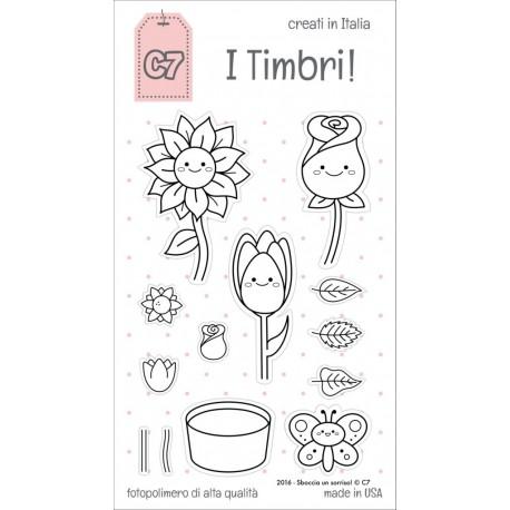 Timbri clear C7 - Sboccia un sorriso