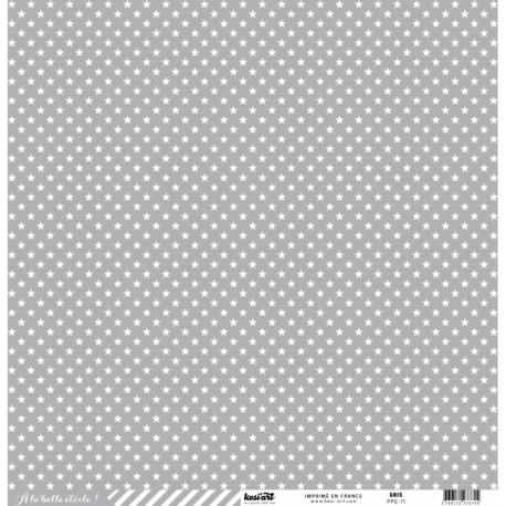 Cartoncino étoile cardstock - Gris