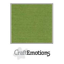 Cartoncino CraftEmotions - Moss