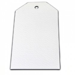 Kit 10 TAGS Stix2 - Large White Alteration Tag