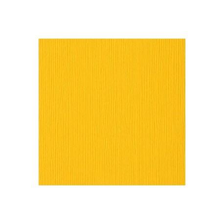 Cartoncino Bazzill Fourz - Desert Marigold