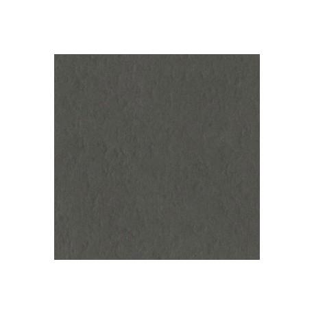 Cartoncino Bazzill Fourz - Zinc Prismatic