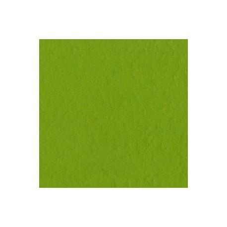 Cartoncino Bazzill Fourz - Intense Kiwi
