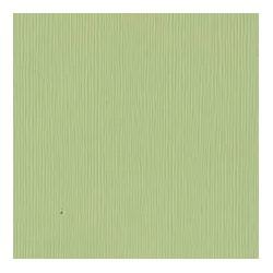 Cartoncino Bazzill Fourz - Spring Breeze