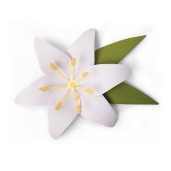 Sizzix - Fustella Bigz - Lily