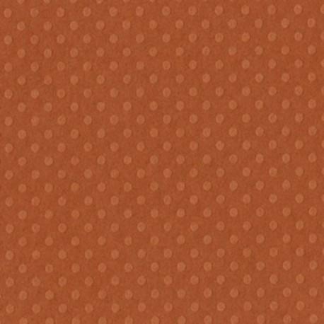 Cartoncino bazzill dots - Clay