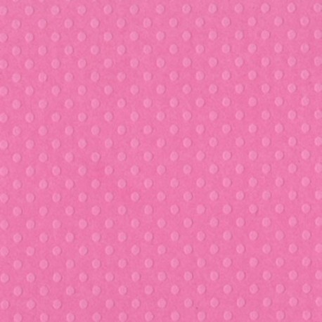 Cartoncino bazzill dots - Slipper