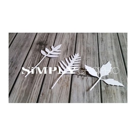 Simply Graphic - Fustella - Feuilles Effilées