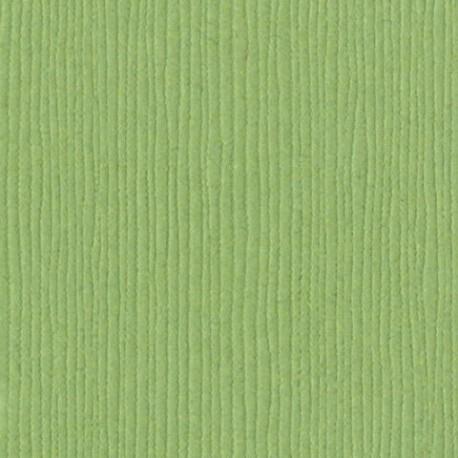 Bazzill - Cartoncino Fourz - LilyPond