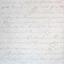 Carta da parati - Scritte tortora