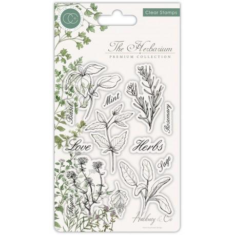 Craft Consortium - Timbri Clear - The herbarium Herbs