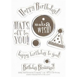 My sentiments Exactly - Timbri Clear - Birthday