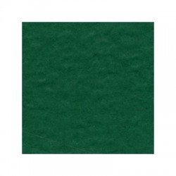 Cartoncino bazzill Orange Peel - Classic Green