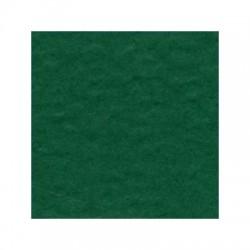 Cartoncino bazzill Orange Peel - Classio Green