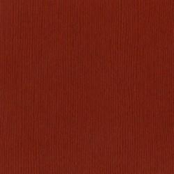 Cartoncino bazzill mono - Cajun