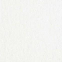 """Bazzill - Cartoncino Orange Peel 12x12"""" - White"""