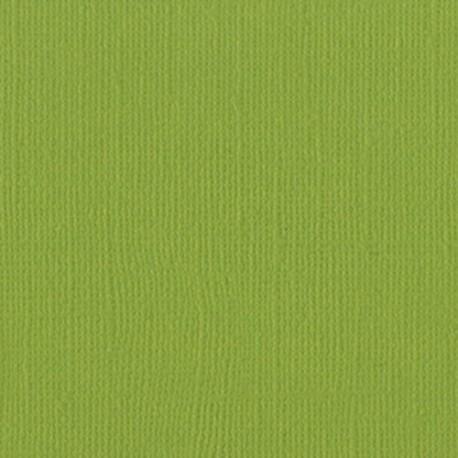 Cartoncino bazzill mono - Parakeet