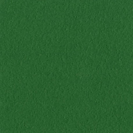 Cartoncino bazzill mono - Bazzill green