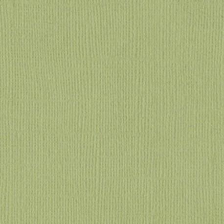 Cartoncino bazzill mono - Pear