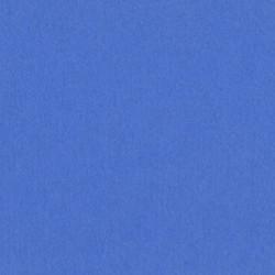 Cartoncino bazzill mono - Blue Retired