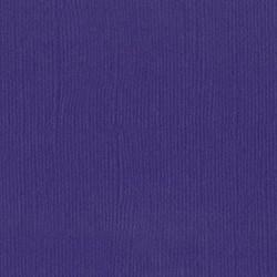 Cartoncino bazzill mono - Bazzill purple