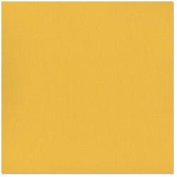 Bazzill Fourz - Cartoncino  - Yukon Gold