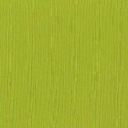 Cartoncino Bazzill Fourz - Sour Apple