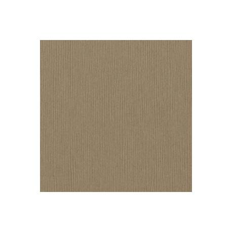 Cartoncino Bazzill Fourz - Quick Sand