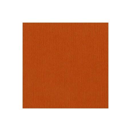 Cartoncino Bazzill Fourz - Navel