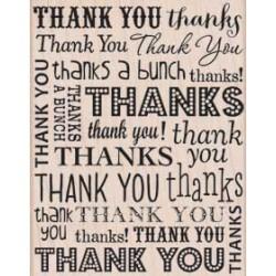 Timbro legno Hero Arts - So Many Thanks