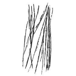 Timbro Cling Stamperia - graffi
