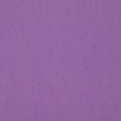 Cartoncino bazzill Fourz - Snapdragon