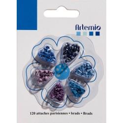 Brads ferma campione mini Artemio - Bleu